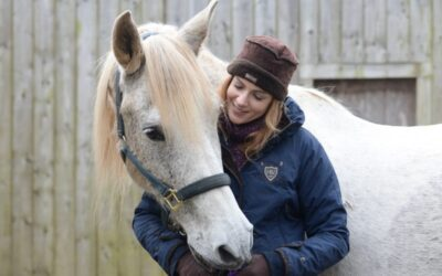 Building a True Connection With Your Horse