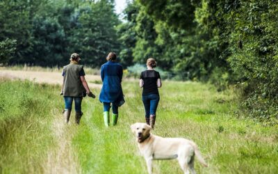 Why is being in nature so good for our mental health?